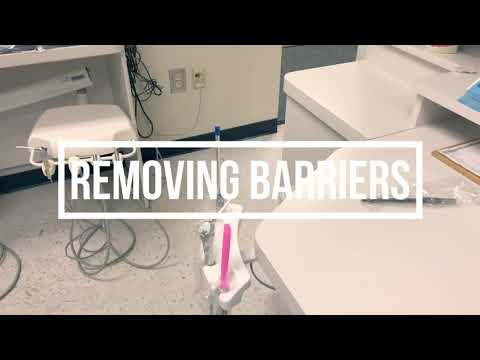 Download Surface Barriers