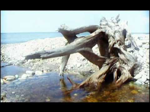 Байкал - Владимир Борисов клип