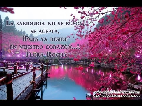 Frases Y Paisajes Bellísimos Amor Armonía Y Felicidad