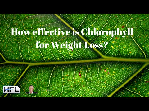 How effective is Chlorophyll for Weight Loss?