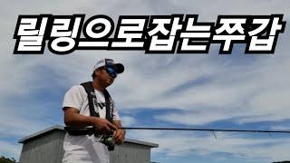 쭈갑 릴링 만으로 쭈갑 잡는 테크닉3