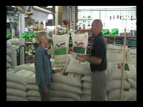 mendham garden center lawn care part 3 seeding - Mendham Garden Center