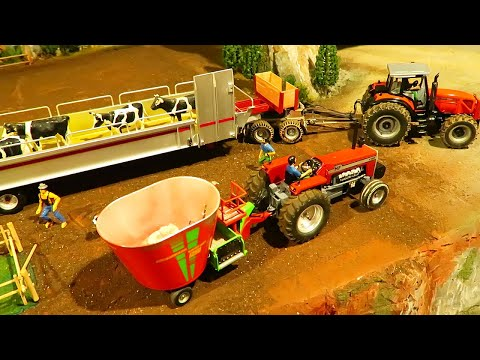 Rc TRACTOR MOVING COWS On The Farm - Farming Action With Heavy Machinery - Massey Ferguson At Work