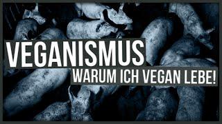Weltvegantag: Darum lebe ich vegan! | Teilzeitnerd