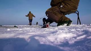 Відкриття сезону на Ужиных / Volga ice fishing