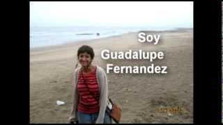 Presentación - Guadalupe Fernandez