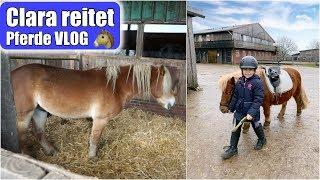 Clara lernt reiten 🐴 6 Monate Reitunterricht | Galopp üben & Pony putzen | Pferde VLOG | Mamiseelen