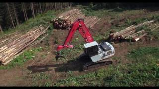 MVR Timber Cutting 2016