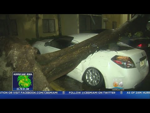 Damage From Hurricane Irma Already Being Seen In South Florida