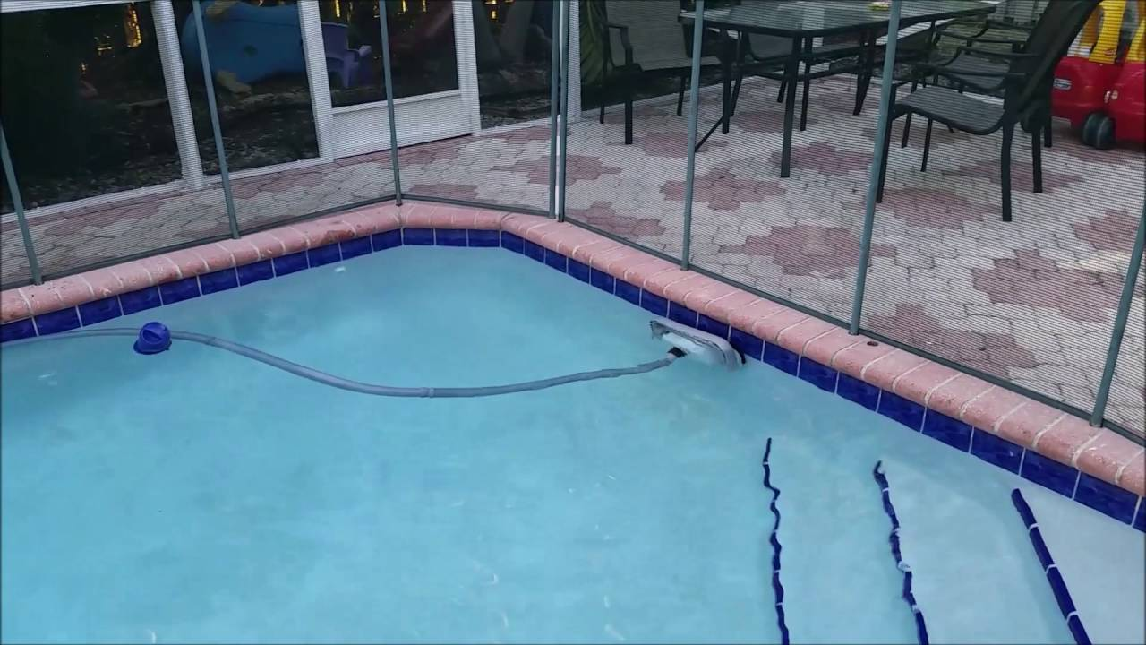 Great White Pool Cleaner: It Preys on Dirt and Grime