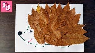 АППЛИКАЦИЯ из осенних листьев ЕЖИК Осенние поделки с детьми DIY Поделки из листьев