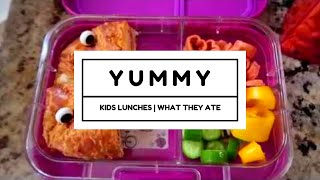 Kids School Lunch Ideas | Bento Style | Lunch Bunch | Crazy Kids