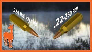 224 Valkyrie Vs 22 250 Remington Is .224 Valkyrie Irrelevant?