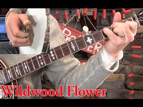 Wildwood Flower On Banjousing Your Pinky Youtube