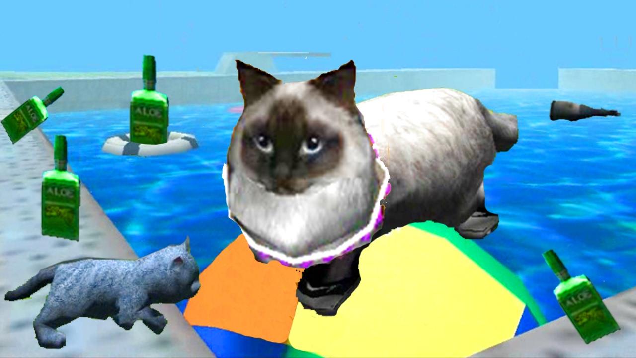 Игры для котов и кошек видео