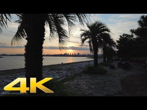 Sunset in Kasairinkai Park, Tokyo - Long Take【東京・葛西臨海公園/夕日】 4K