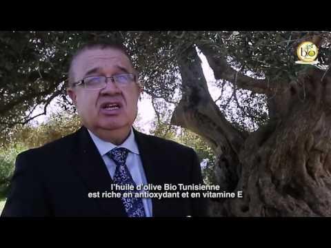 Cultures biologiques en Tunisie