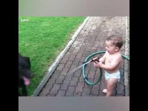Приколы с детьми и собаками