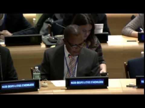 Mr. Richard Mkandawire - International Fertilizer Industry Association - UN Post-2015 negotiations