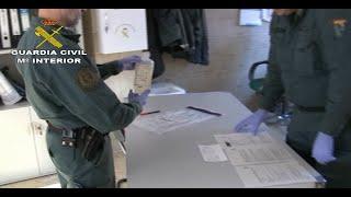Guardia Civil desmantela red irregular de medicamentos para animales