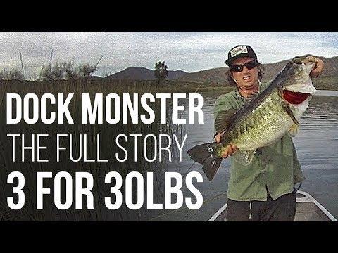 Dock Monster: The Full Story of 3 for 30lbs
