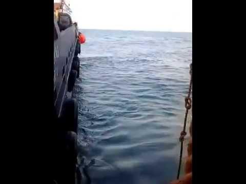 INDONESIA offshore in south east sumatera (petroleum superior) CNOOC SES LTD