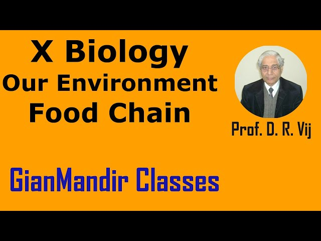 X Biology | Our Environment | Food Chain by Manjit Ma'am
