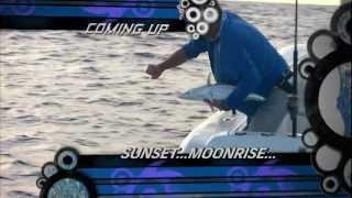 "Into The Blue: ""Marathon Hump"" 2013 : Season 5 Episode 10"