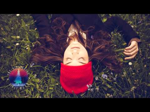 First Aid Kit - Wolf (MATZINGHA Edit)