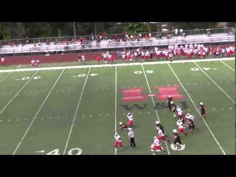 Carnegie Mellon University Football Highlights vs ...