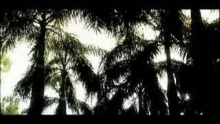 Mann-Jahan bhee dekhoon