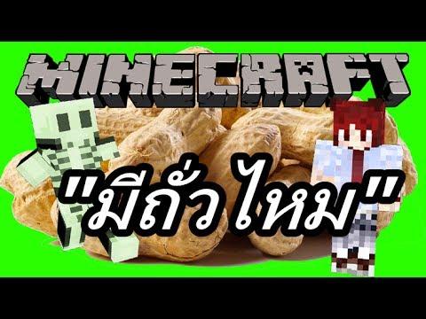 Minecraft มีถั่วไหม