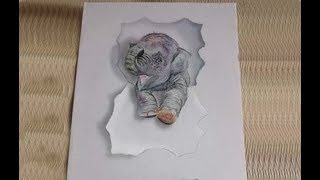 Trick Art - Drawing 3D Elephant - How to Draw 3D Elephant on Paper - Trick Art Drawing Elephant