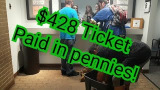Paying a $428 ticket with PENNIES!