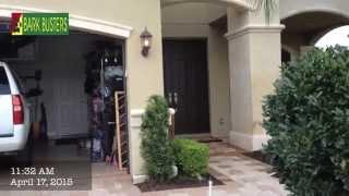 Aussie Shepherd & Miniature Dachshund - Dog Training Of Fort Myers - Patrick Logue