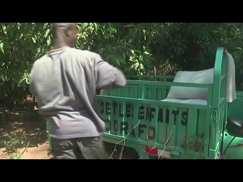 Togo, Relance de l'élevage porcin