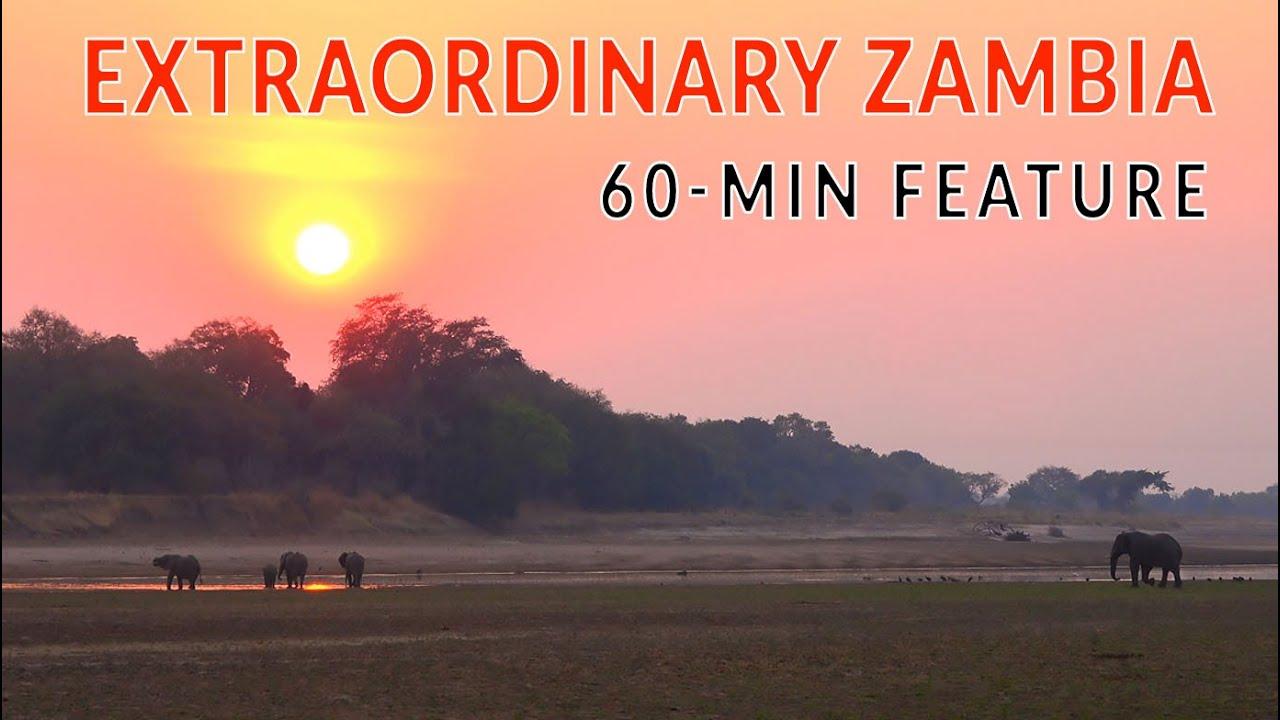 ZAMBIA WILDLIFE OVERLAND. Full-length feature documentary part-1 |4xOverland