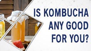 Baixar Ask Dr Gundry: Is kombucha any good for you?