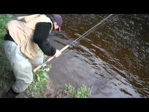 Fly Fishing The River Wye In Wales