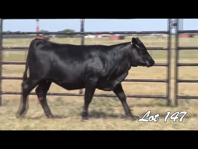Pollard Farms Lot 147