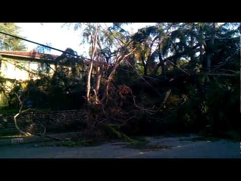 Wind Hurricane in Monrovia.3gp