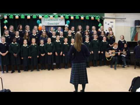 Loreto Secondary School, Balbriggan, Co. Dublin - Post-Primary Finalist 2017