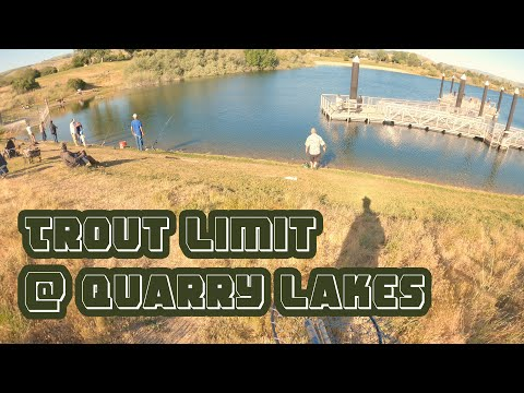Catching A Limit Of Rainbow Trout At Quarry Lakes Union City / Fremont CA | ITGETSREEL Episode 48