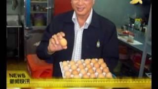 南洋网:化验证实假鸡蛋是真蛋