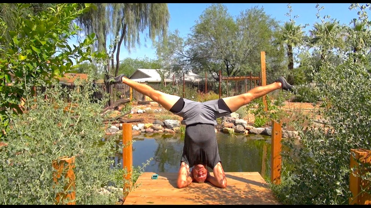 Incredible Headstand Meditation for the Martial Arts! Inversion Training  and Zen Breathing!