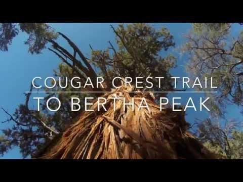 Cougar Crest Trail to Bertha Peak Hike - Big Bear Lake CA