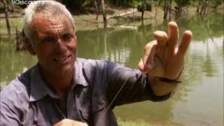 Рыбалка на озере |  Речные монстры | Discovery Channel
