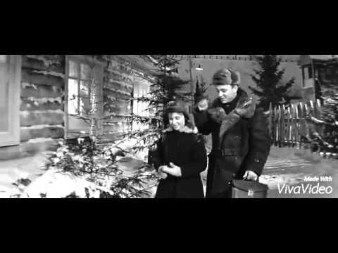 Старый клён - ( песня из к/ ф Девчата ).