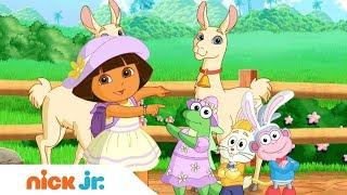Tier Spaß! Musik Video mit Dora & Bubble Guppies I Nick Jr. singt | Nick Jr. auf Deutsch