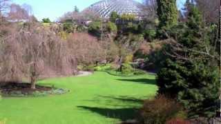Bloedel Conservatory-japanese Garden Bridge-queen Elizabeth Park